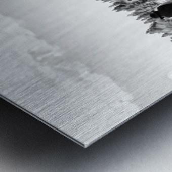 U. S. Civil War Re-enactment Metal print