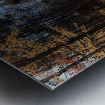 Tapis de feuille Metal print