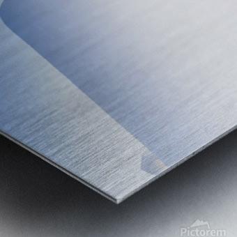 _TEL4429 Metal print