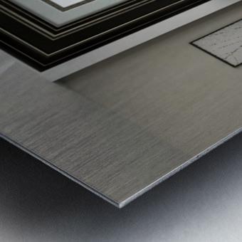 art   monogram   dove Metal print