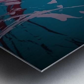 KIMG4117 Metal print