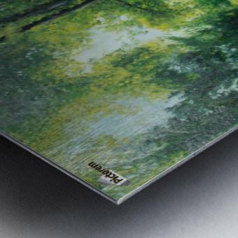 Arboretum at canal Metal print