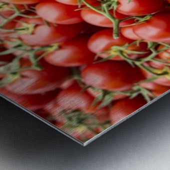 Tomatoes for sale open air market Metal print
