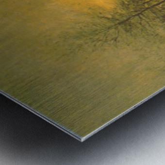 Dusk by Maris Metal print