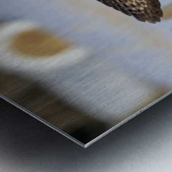The Take Off Metal print