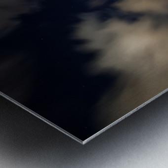 Shadow of the Palm  Metal print