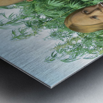 Modern Day Farmers Metal print