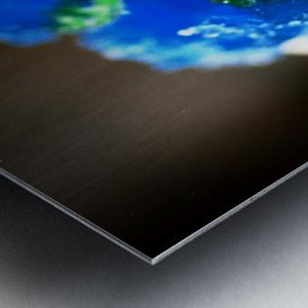 Kakigori Metal print