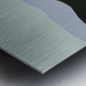 0480 Metal print