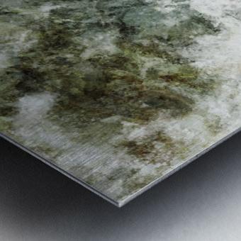 Hidden wolves Metal print