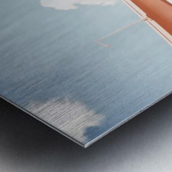Dolphin Expressway 002 Metal print