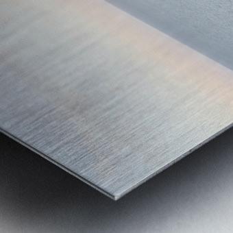 APULIA Metal print