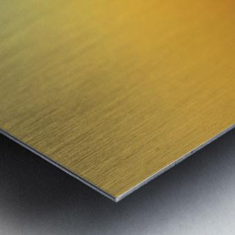 DSC_6658 Metal print