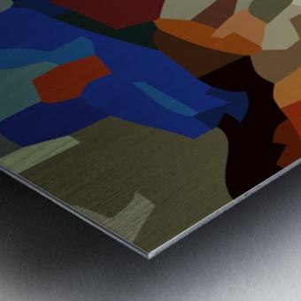paradolic vista Metal print