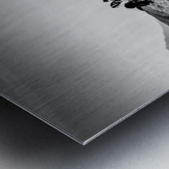 Black Tie Bonanza Metal print