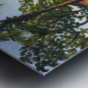 Canoe Beach Metal print