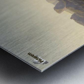 The sheppardes Metal print