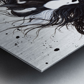 Black and White Pinto Horse Metal print