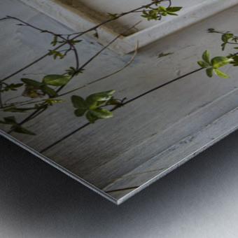 LetterBox Metal print