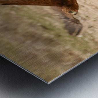 AdriaanPrinsloo 7140 2 Metal print