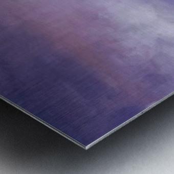 0253 Metal print