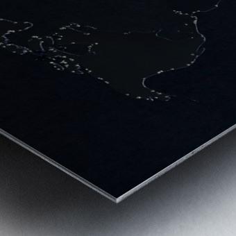 Dark Continent Lallia Metal print