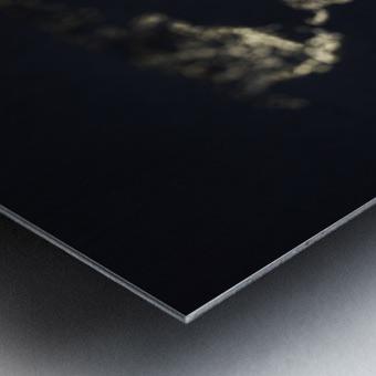 Dark Continent Heron Metal print