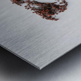 Light Continent Desertia Metal print