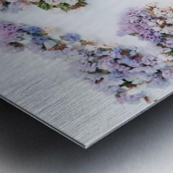 Light Continent Erina Metal print