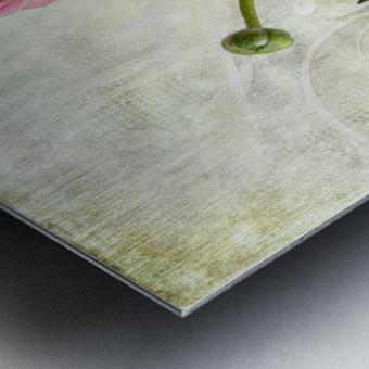 Pink buttercup Metal print