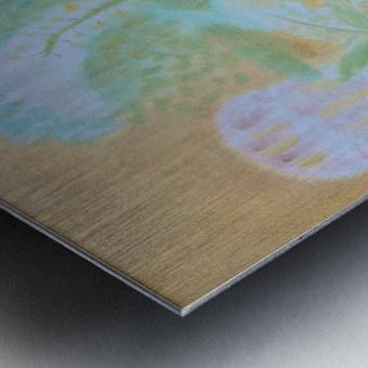 DSC_1046 Metal print