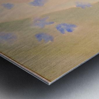 DSC_0995 Metal print