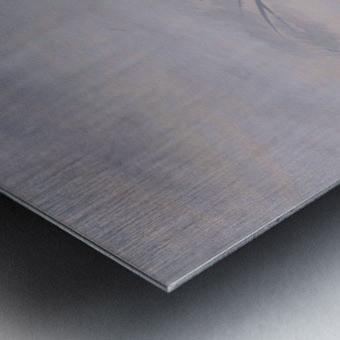 DSC_0992 Metal print