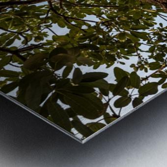 Resilience - width Metal print