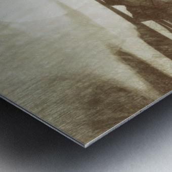 Island Metal print