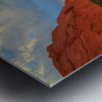 BEAUTY ETERNAL Metal print