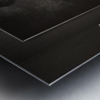 Farina Tipo 00 Metal print