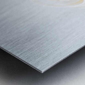 Daltana Spring Artill Metal print