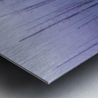 Misty Blue Pond Metal print