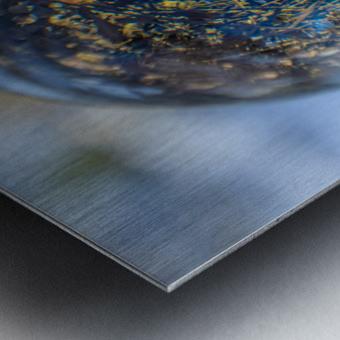 Feuillage Metal print