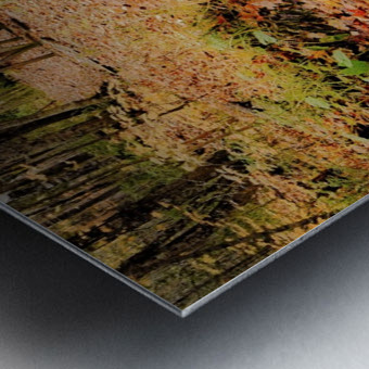 Passage oblige   Metal print