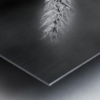 Epine Metal print