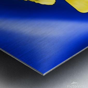 Yelfinorum V1 Metal print