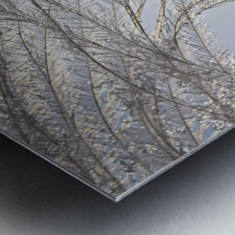 Plumeau Metal print