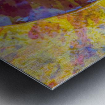 Colors Of Nature ap 2038 Metal print