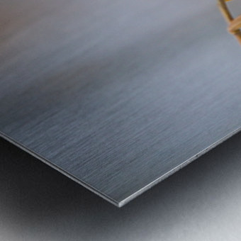 Goldfinch ap 1816 Metal print