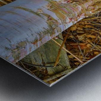 Barn Trolley ap 2241 Metal print