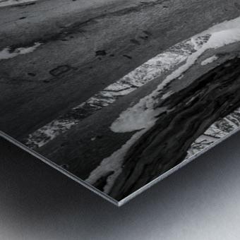 Beech ap 2044 B&W Metal print