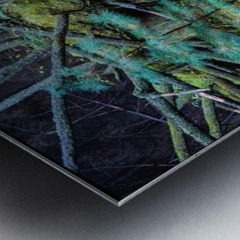 Fallen Giant ap 1513 Metal print