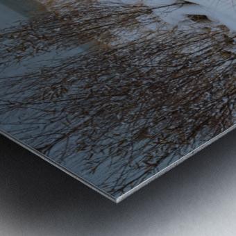 Duck Blind ap 2712 Metal print
